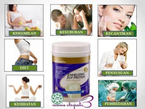 Kebaikan ESP 300x225 Energizing Soy Protein (ESP)