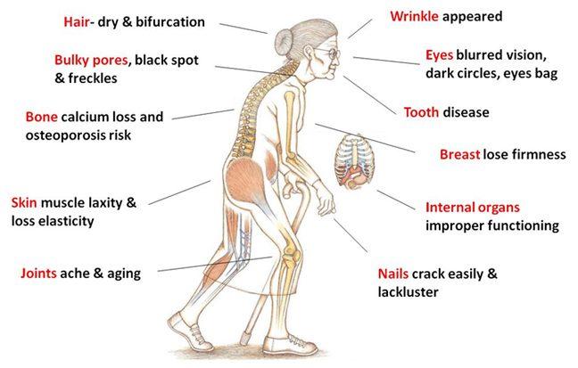 Kesan kekurangan collagen